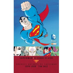 GRANDES AUTORES DE SUPERMAN JEPH LOEB Y TIM SALE: LAS CUATRO ESTACIONES