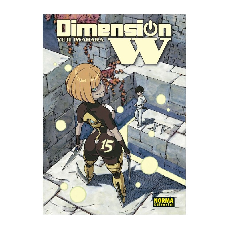 DIMENSION W Nº 15