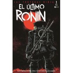 LAS TORTUGAS NINJA: EL ÚLTIMO RONIN Nº 01